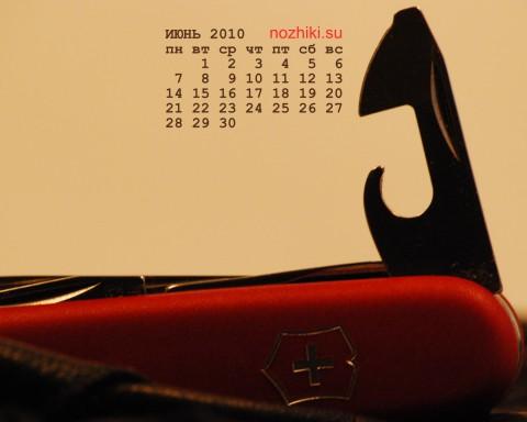 фотообои-календарь на 2010 июнь