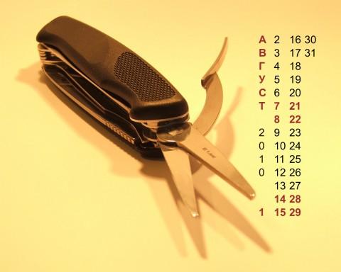 фото ножа Венгер и календарь рабочего стола на август 2010