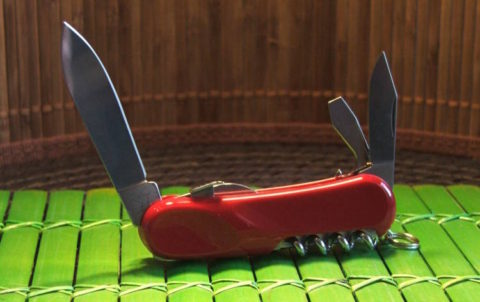 Швейцарский складной нож Wenger Evolution S10